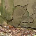 concrete cracks from pyrrhotite-2 - Attack A Crack Foundation Repair